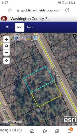 Lot 18 Dunlap Drive, Chipley, FL 32428 (MLS #713325) :: Scenic Sotheby's International Realty