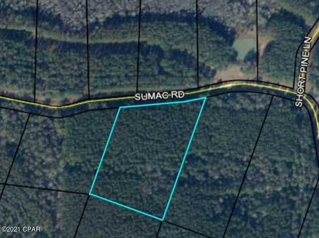 00 Sumac Road, Westville, FL 32464 (MLS #713917) :: Counts Real Estate on 30A