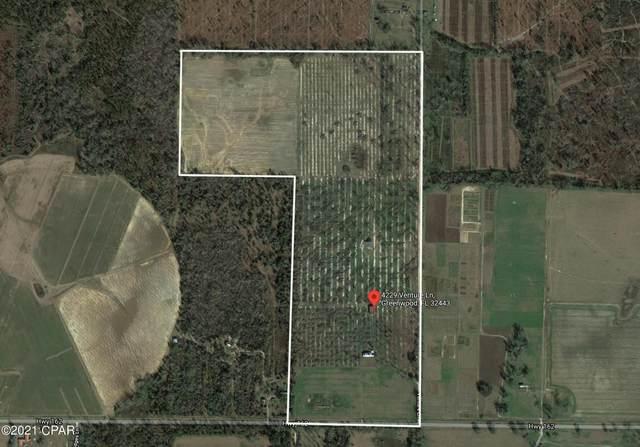 4229 Venture Lane, Greenwood, FL 32443 (MLS #715095) :: The Ryan Group