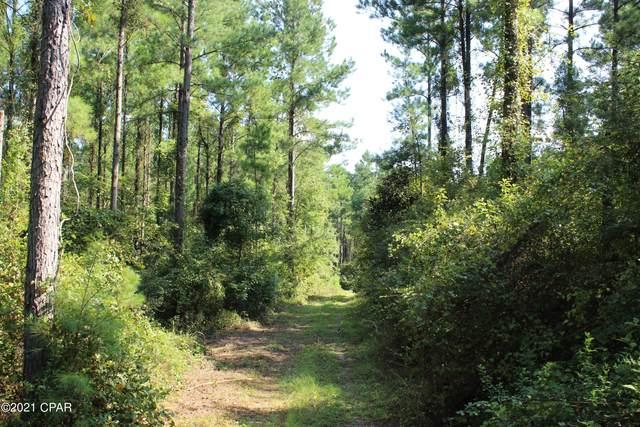 TBD Roche Road, Chipley, FL 32428 (MLS #716602) :: Team Jadofsky of Keller Williams Realty Emerald Coast
