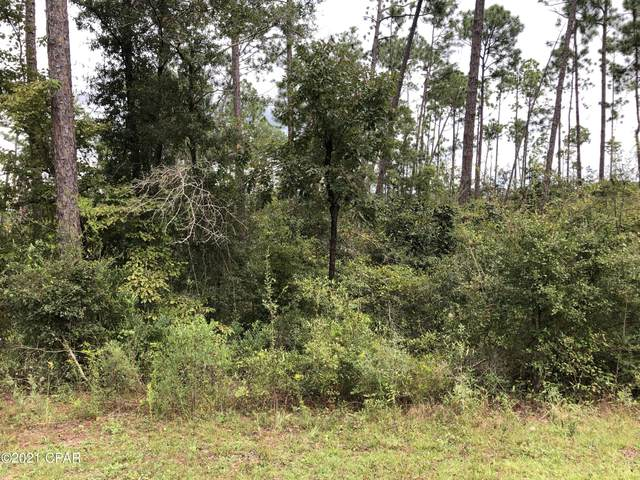 0 View Drive, Alford, FL 32420 (MLS #717027) :: Scenic Sotheby's International Realty