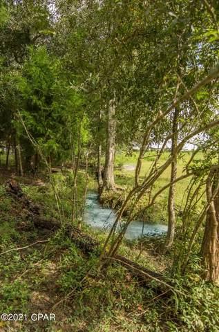4084 Hwy 77, Graceville, FL 32440 (MLS #717628) :: Scenic Sotheby's International Realty