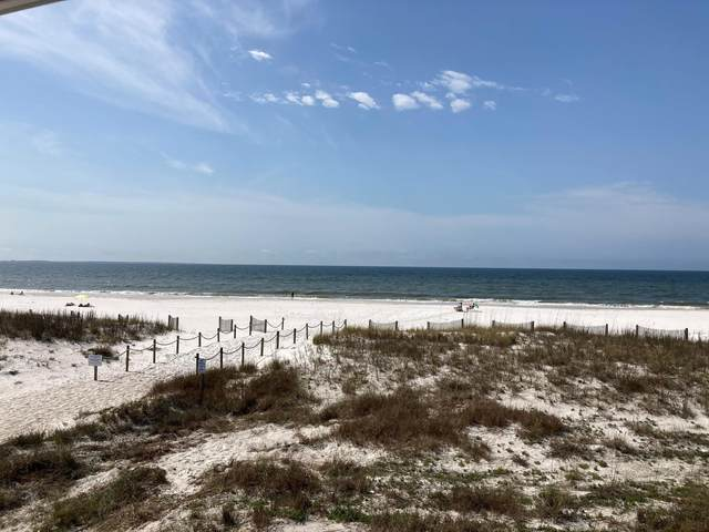 118 S 38th Street #7, Mexico Beach, FL 32410 (MLS #717658) :: Scenic Sotheby's International Realty