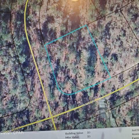 0000 Roger Drive, Chipley, FL 32428 (MLS #717668) :: The Premier Property Group