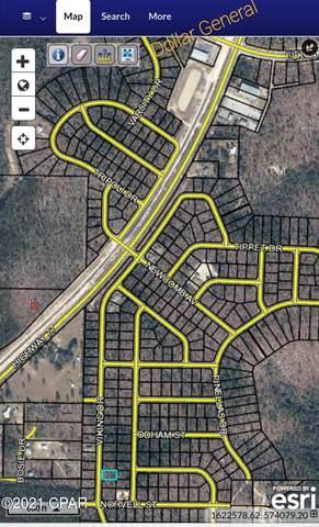 00 Viking Drive, Chipley, FL 32428 (MLS #718069) :: Scenic Sotheby's International Realty