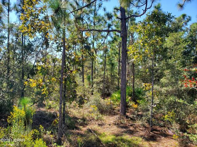 4679 Twin Ponds Road, Altha, FL 32421 (MLS #718188) :: Counts Real Estate on 30A