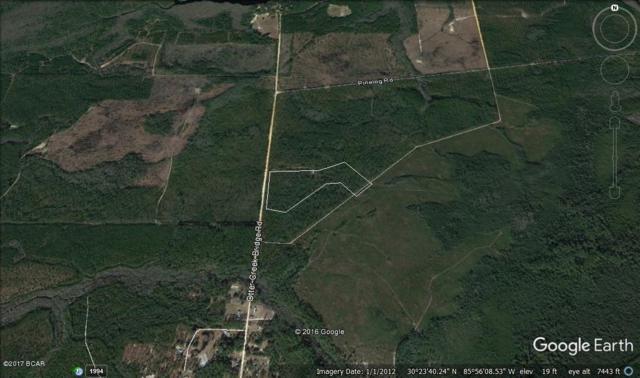 13328 Otter Creek Bridge Road, Ebro, FL 32437 (MLS #654394) :: Coast Properties