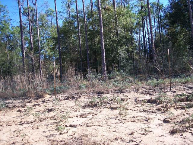 Lot 03 Lakeside Drive, Chipley, FL 32428 (MLS #655374) :: Keller Williams Realty Emerald Coast