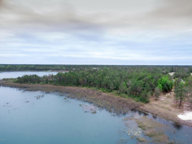 139 Lake Merial Shores Drive, Southport, FL 32409 (MLS #661232) :: Scenic Sotheby's International Realty
