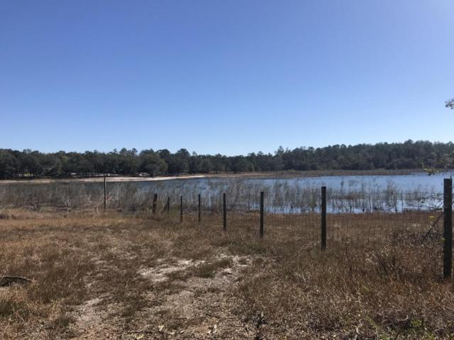 LOT 51 Grassy Pond Road, Chipley, FL 32428 (MLS #663089) :: Coast Properties