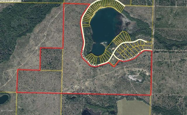 XXX Hammond Lake Drive, Chipley, FL 32428 (MLS #664284) :: ResortQuest Real Estate