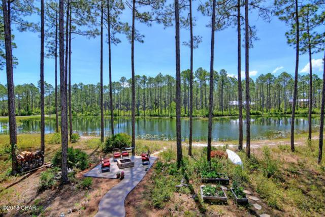 6603 Button Buck Trail, Panama City Beach, FL 32413 (MLS #667734) :: Scenic Sotheby's International Realty