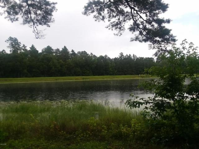 0000 Marian Drive Lot 5, Bonifay, FL 32425 (MLS #672906) :: Coast Properties