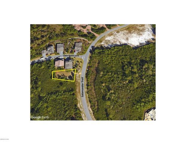 1333 Salamander Trail, Panama City Beach, FL 32413 (MLS #674813) :: ResortQuest Real Estate