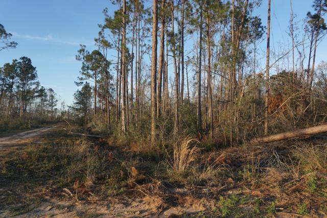 000 Tamarac Road, Marianna, FL 32448 (MLS #675420) :: Team Jadofsky of Keller Williams Success Realty