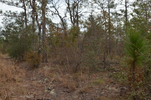 000 Partridge Place, Chipley, FL 32428 (MLS #678455) :: Counts Real Estate Group
