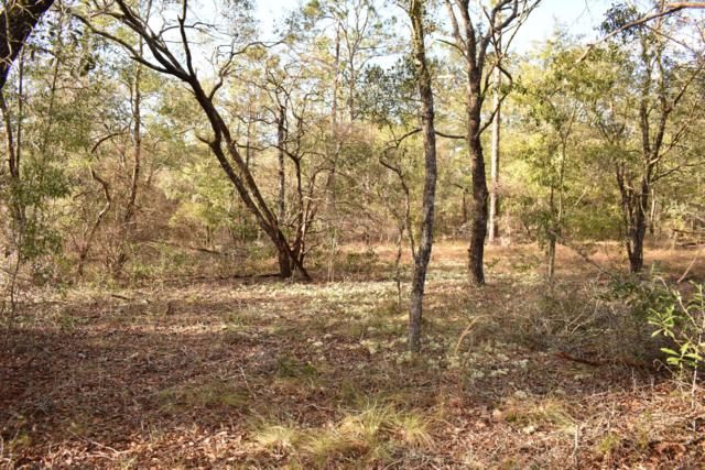 Lot B-198 Osprey Drive, Chipley, FL 32428 (MLS #679686) :: Counts Real Estate Group