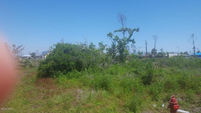 320 Hatley Drive, Mexico Beach, FL 32456 (MLS #683678) :: CENTURY 21 Coast Properties