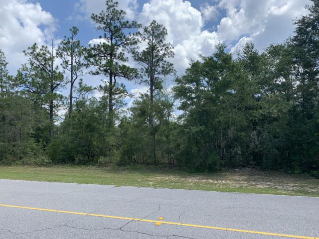 Lot 27 Shenandoah Boulevard, Chipley, FL 32428 (MLS #685307) :: EXIT Sands Realty