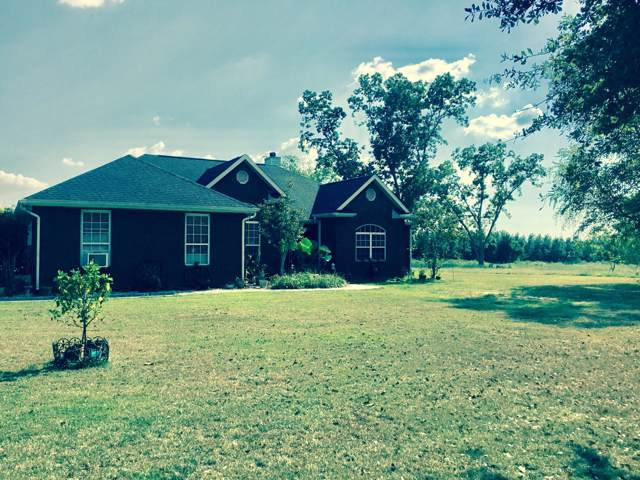 1349 Lovewood Road, Cottondale, FL 32431 (MLS #688945) :: ResortQuest Real Estate