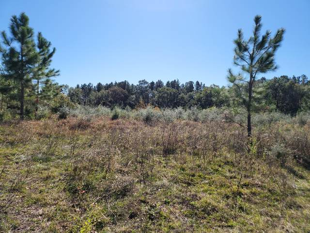 000 Douglas Ferry Road, Caryville, FL 32427 (MLS #704749) :: Anchor Realty Florida