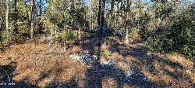 00 Chequamegon Avenue, Alford, FL 32420 (MLS #705062) :: Counts Real Estate Group, Inc.