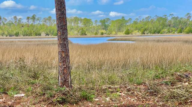 9203 S Burnt Mill Creek Road, Southport, FL 32409 (MLS #710018) :: Scenic Sotheby's International Realty