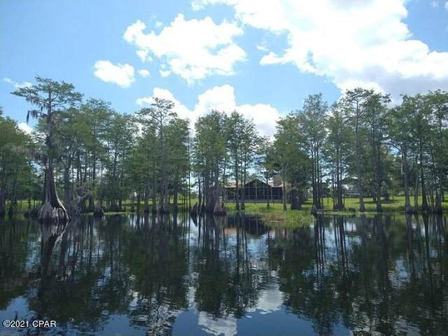 24975 NW Walter Potts Road, Altha, FL 32421 (MLS #714394) :: Scenic Sotheby's International Realty