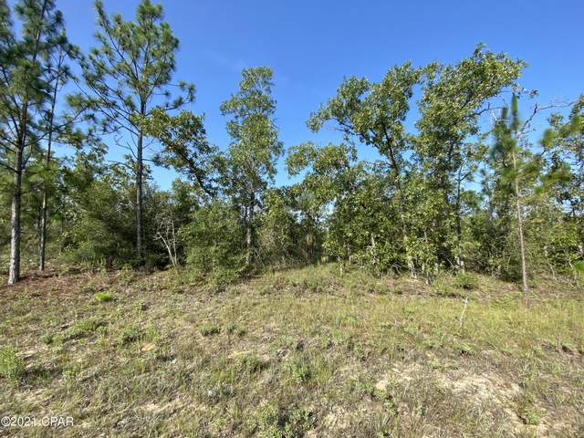 Lot 18 Trellis Drive, Chipley, FL 32428 (MLS #714810) :: The Premier Property Group