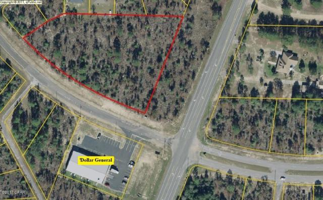 0 Elkcam Boulevard, Chipley, FL 32428 (MLS #389084) :: Counts Real Estate Group, Inc.