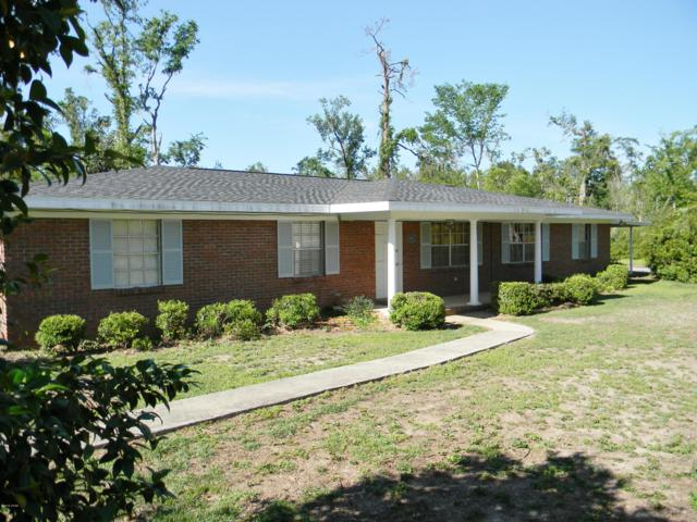 4859 Donna Drive, Marianna, FL 32446 (MLS #676133) :: Scenic Sotheby's International Realty
