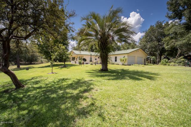 3351 Native Dancer Trail, Chipley, FL 32428 (MLS #676315) :: ResortQuest Real Estate