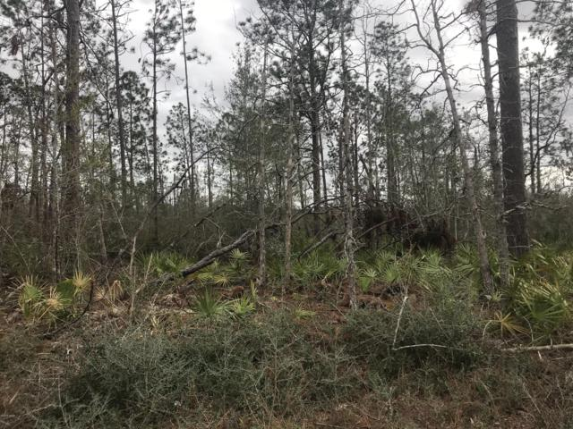 0 Orchid Lane, Fountain, FL 32438 (MLS #654288) :: Counts Real Estate Group, Inc.