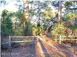 LOT 19 Lucas Lake, Chipley, FL 32428 (MLS #638514) :: ResortQuest Real Estate