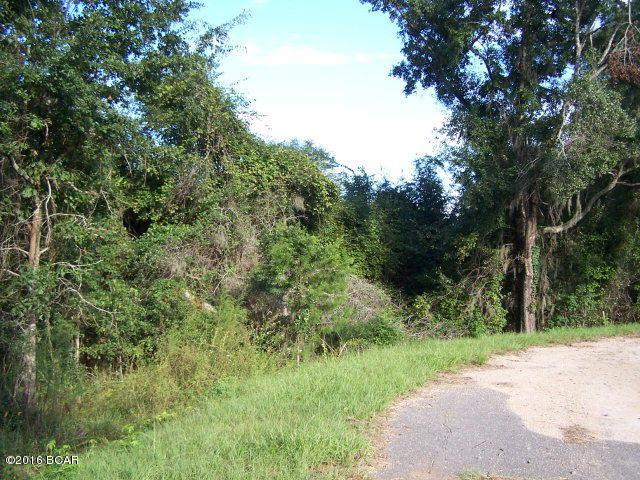 26 Appalachee Trail, Marianna, FL 32446 (MLS #640760) :: Counts Real Estate on 30A