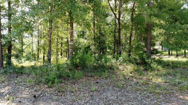 00 Pine Bluff Drive, Chipley, FL 32428 (MLS #649942) :: ResortQuest Real Estate