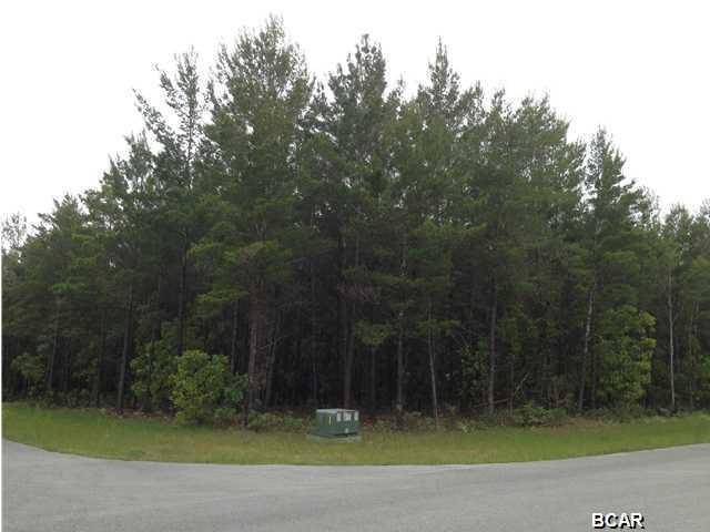 1613 White Western Lake Lane, Southport, FL 32409 (MLS #654357) :: Coast Properties