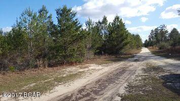786 Highway 20, Youngstown, FL 32466 (MLS #655988) :: Coast Properties