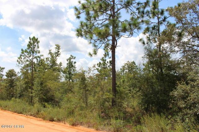 0 Peppervine Pl Lot 3, Chipley, FL 32428 (MLS #663004) :: ResortQuest Real Estate