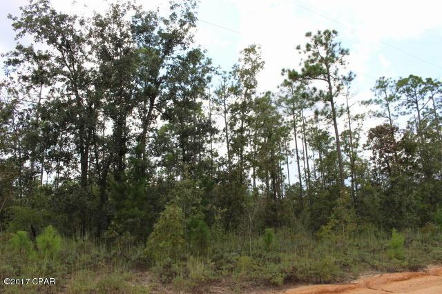 0 Coralvine Drive Lot 4, Chipley, FL 32428 (MLS #663007) :: ResortQuest Real Estate