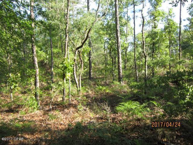 537 Coralvine Drive, Chipley, FL 32428 (MLS #664397) :: Coast Properties