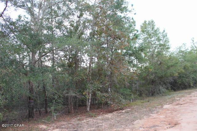 0 Andrew Ct, Alford, FL 32420 (MLS #664902) :: Scenic Sotheby's International Realty