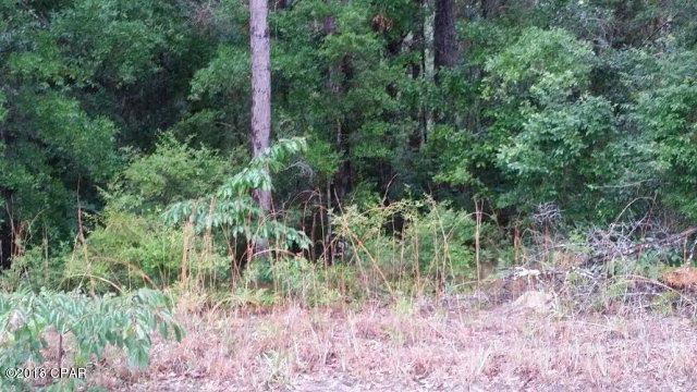 000 Chapel Branch Road, Vernon, FL 32462 (MLS #668462) :: Keller Williams Emerald Coast