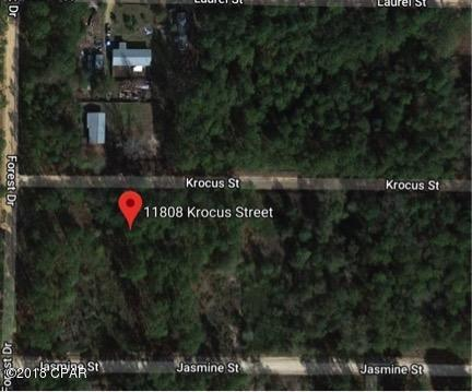 11808 Krocus Street, Fountain, FL 32438 (MLS #668762) :: Keller Williams Realty Emerald Coast