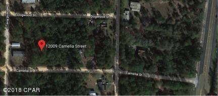 12009 Camellia Street, Fountain, FL 32438 (MLS #668767) :: Keller Williams Realty Emerald Coast