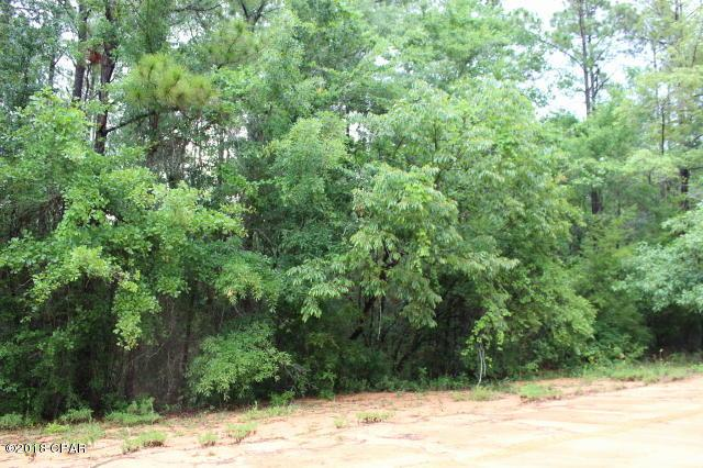 0 Plateau Circle Lot 7, Alford, FL 32420 (MLS #672048) :: Keller Williams Realty Emerald Coast
