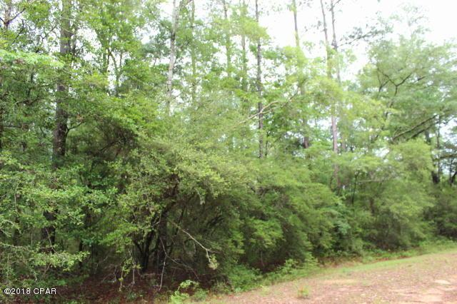 0 Fargo Drive Lot 12, Alford, FL 32420 (MLS #672050) :: Keller Williams Realty Emerald Coast
