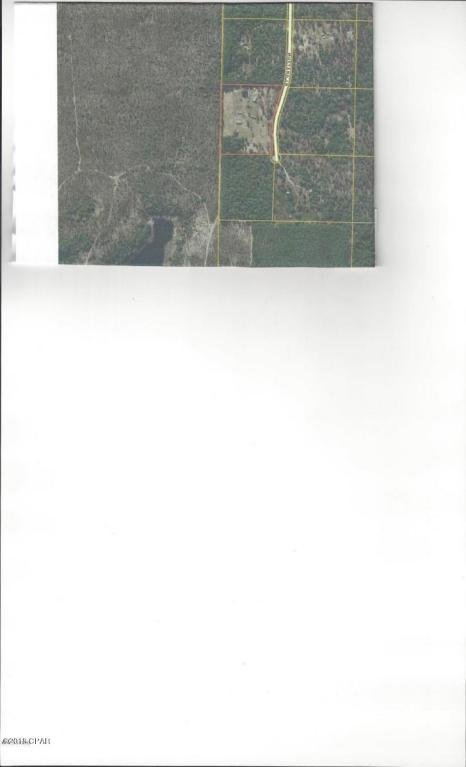 4351 Mustang Lane, Chipley, FL 32428 (MLS #672329) :: ResortQuest Real Estate