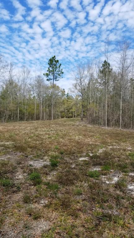 0 Highview Circle, Chipley, FL 32428 (MLS #673559) :: Keller Williams Realty Emerald Coast