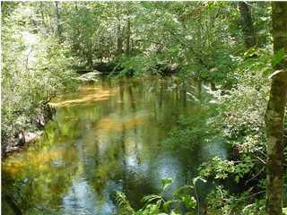 000 Padgett Road, Youngstown, FL 32466 (MLS #676615) :: Keller Williams Emerald Coast